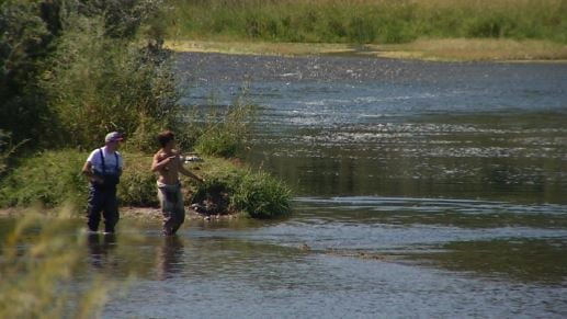 More tests set for Yellowstone, tributaries after fish kill