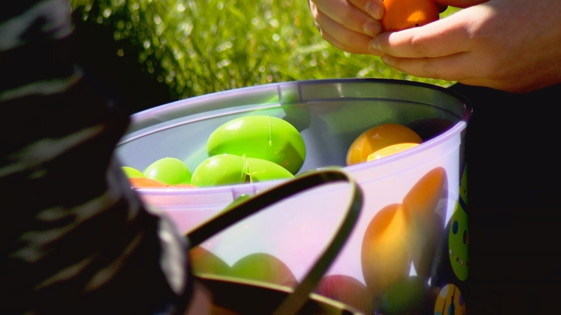 City hosts egg hunt Saturday