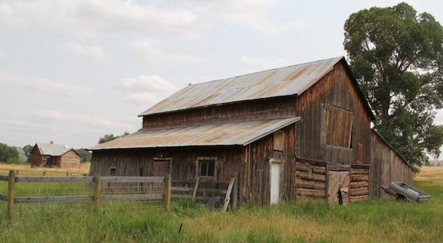 An old barn and an outbuilding, background, were built during the lifetime of Thomas Kent, who homesteaded on Bridger Creek. (Ed Kemmick/Last Best News)