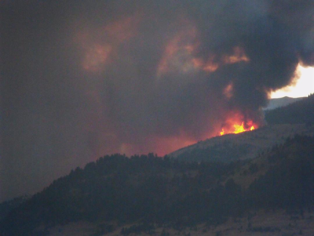 Black Tail Fire (Photo by Steve Martin)