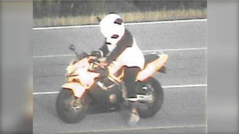 A motorcyclist was ticketed for driving in a panda suit on a highway in Minneapolis.  CBS MINNESOTA