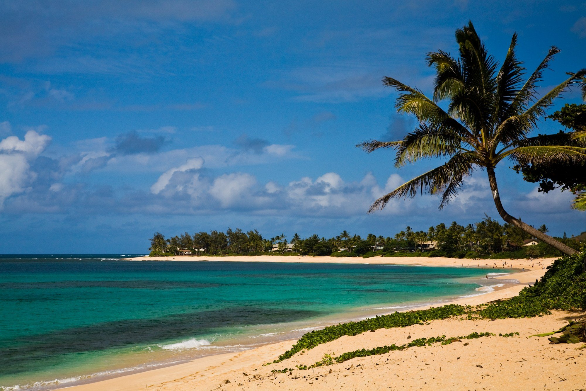 A beach in Hawaii. photo courtesy of CNN,