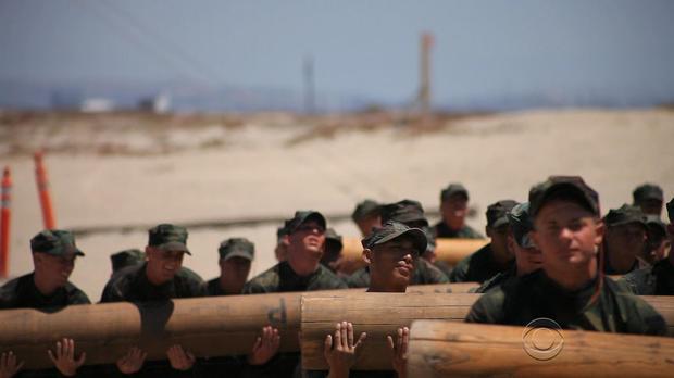 Seals us navy